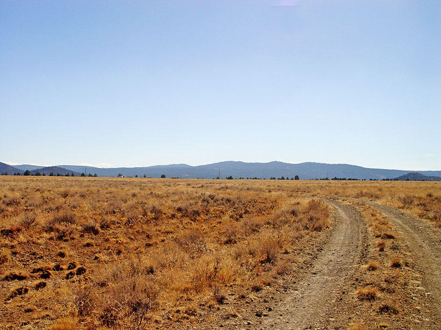 Remote 20 Acres in Southern Oregon with Access 1/3 of a mile away - Image 2