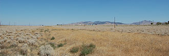 Pair of Mill City Nevada Lots