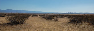 2.5 Acre Rural Los Angeles County Land