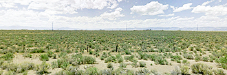 Spacious 3 Acre Lot Surrounded by Natural Wonders