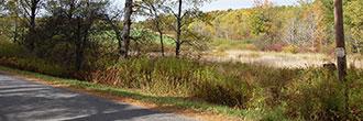 Rare 2 Acres Near Susquehanna River