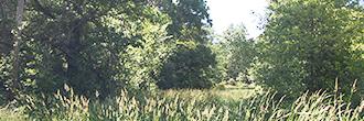 Lovely Ohio Lot Near Crystal Lake