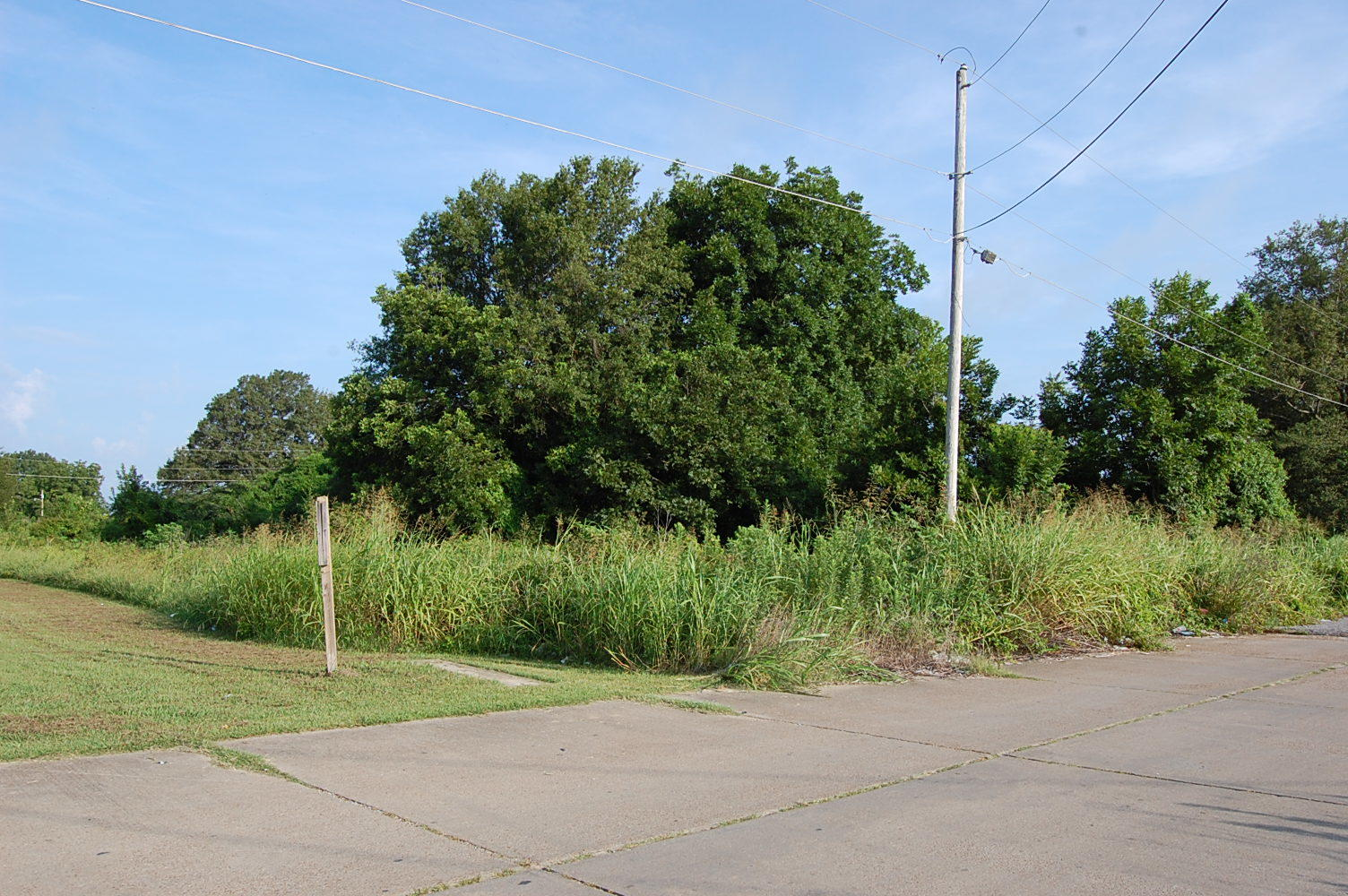 Residential lot in Northwest Mississippi - Image 3