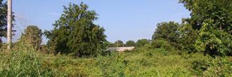 Residential lot in Northwest Mississippi