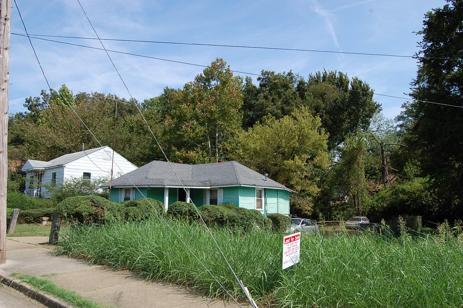 Charming Lot in Heart of Memphis - Image 3