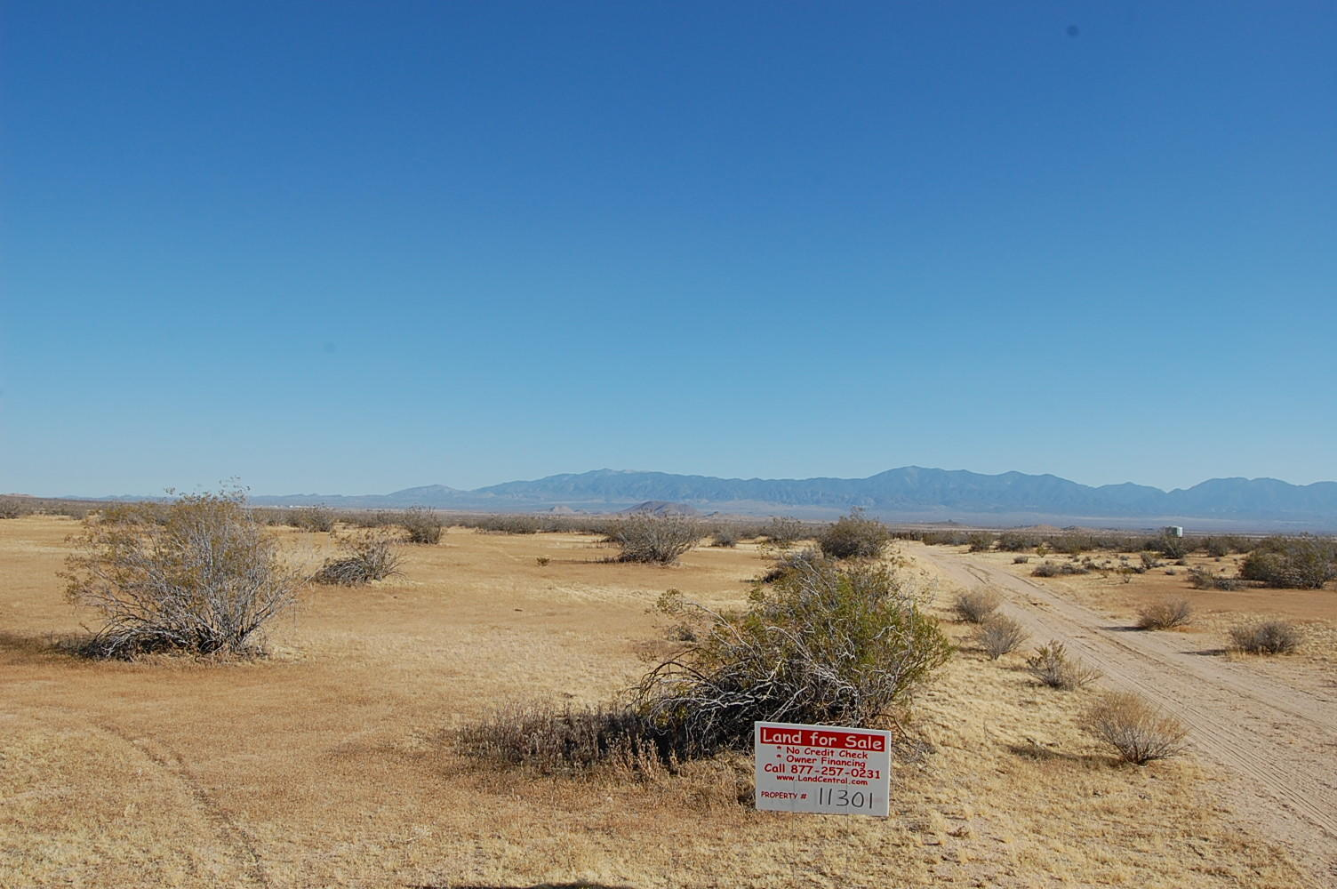 Great Access Acreage Near Lake Los Angeles - Image 4
