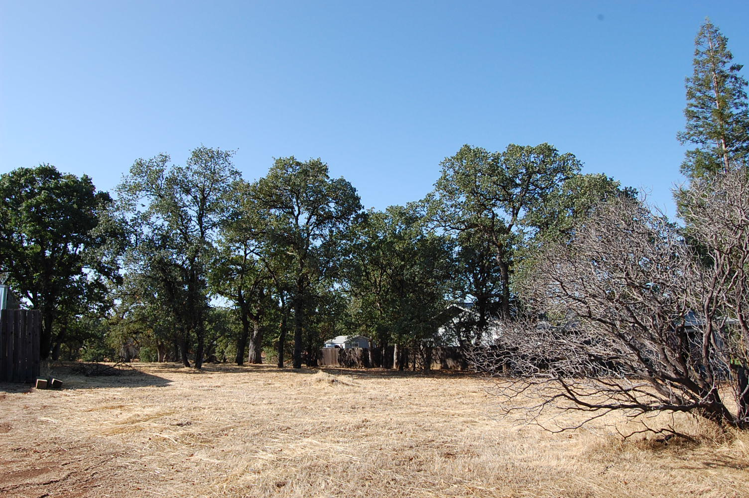 Wonderful Cottonwood Residential Lot on Dead End Street in California - Image 3
