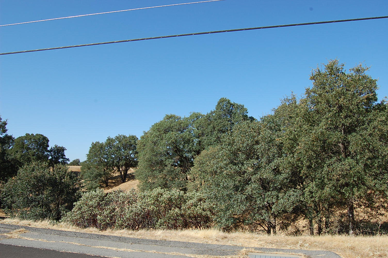 California Dreaming Property in Cottonwood - Image 0