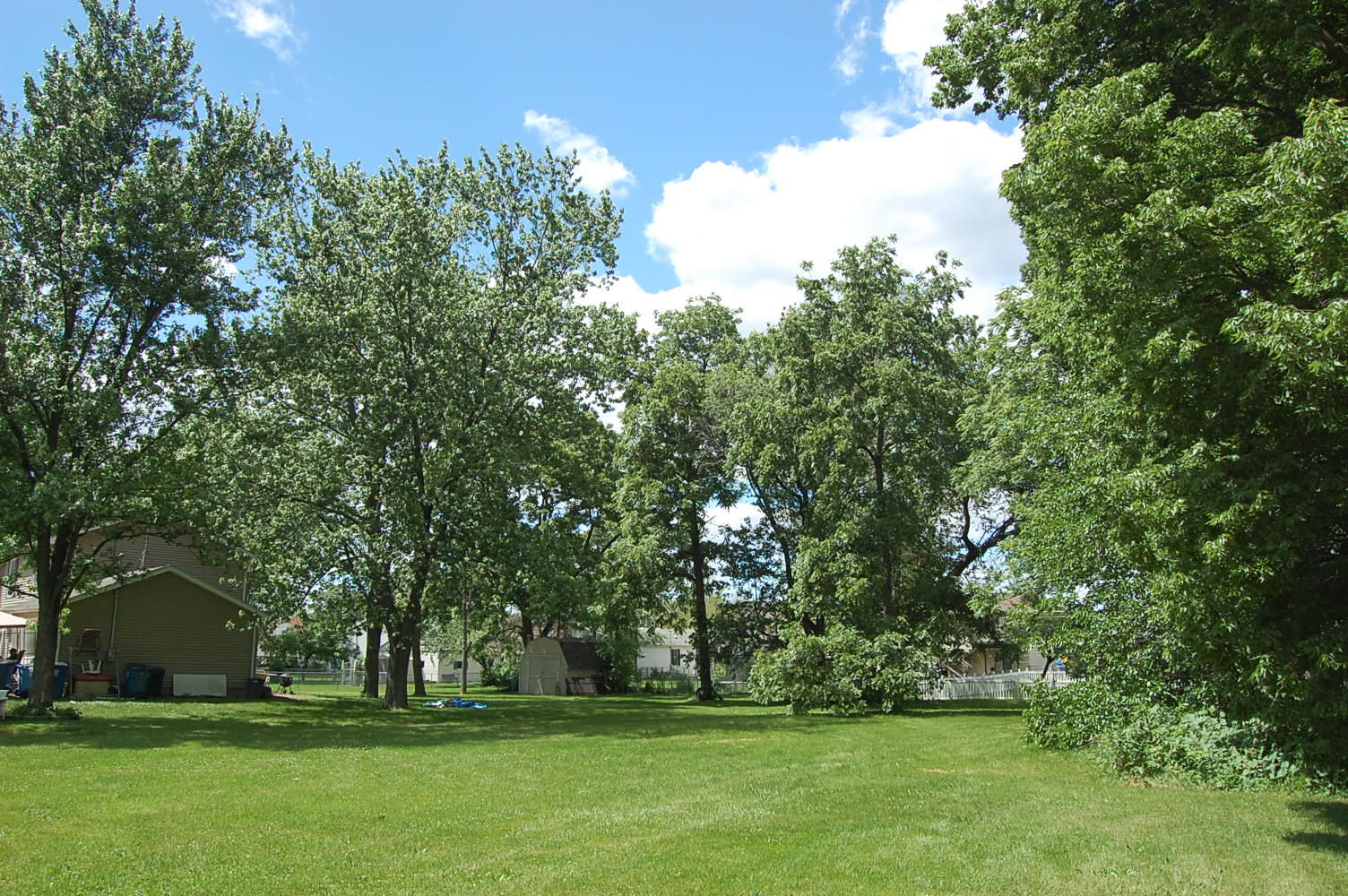 Usable Land in Friendly Illinois Town - Image 1