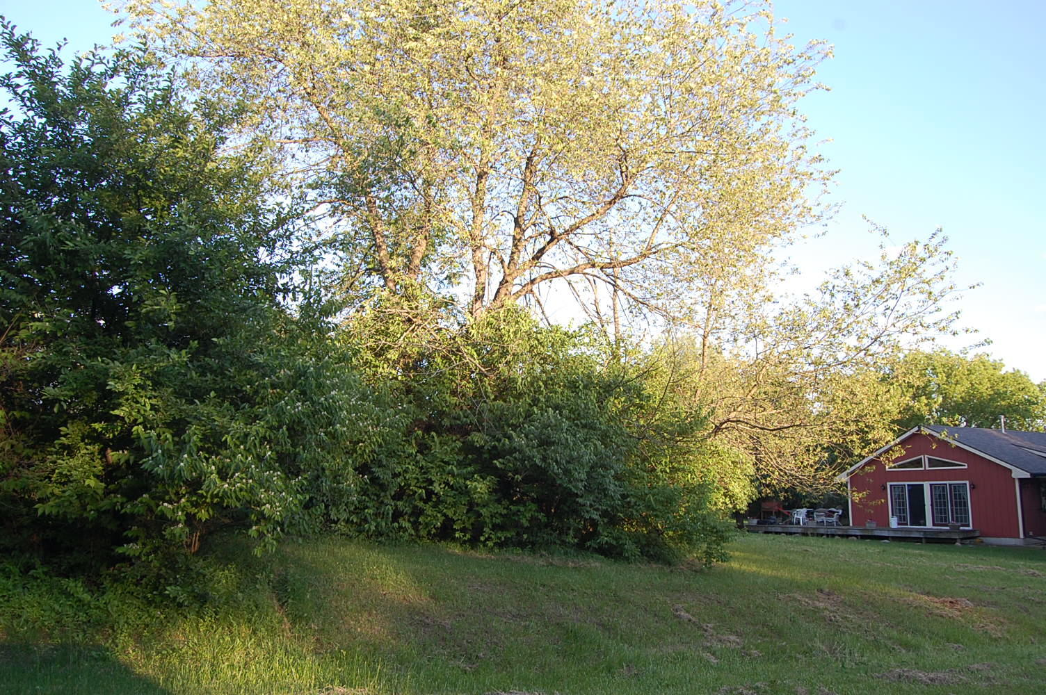 Beautiful Lot Near Candlewick Lake - Image 4