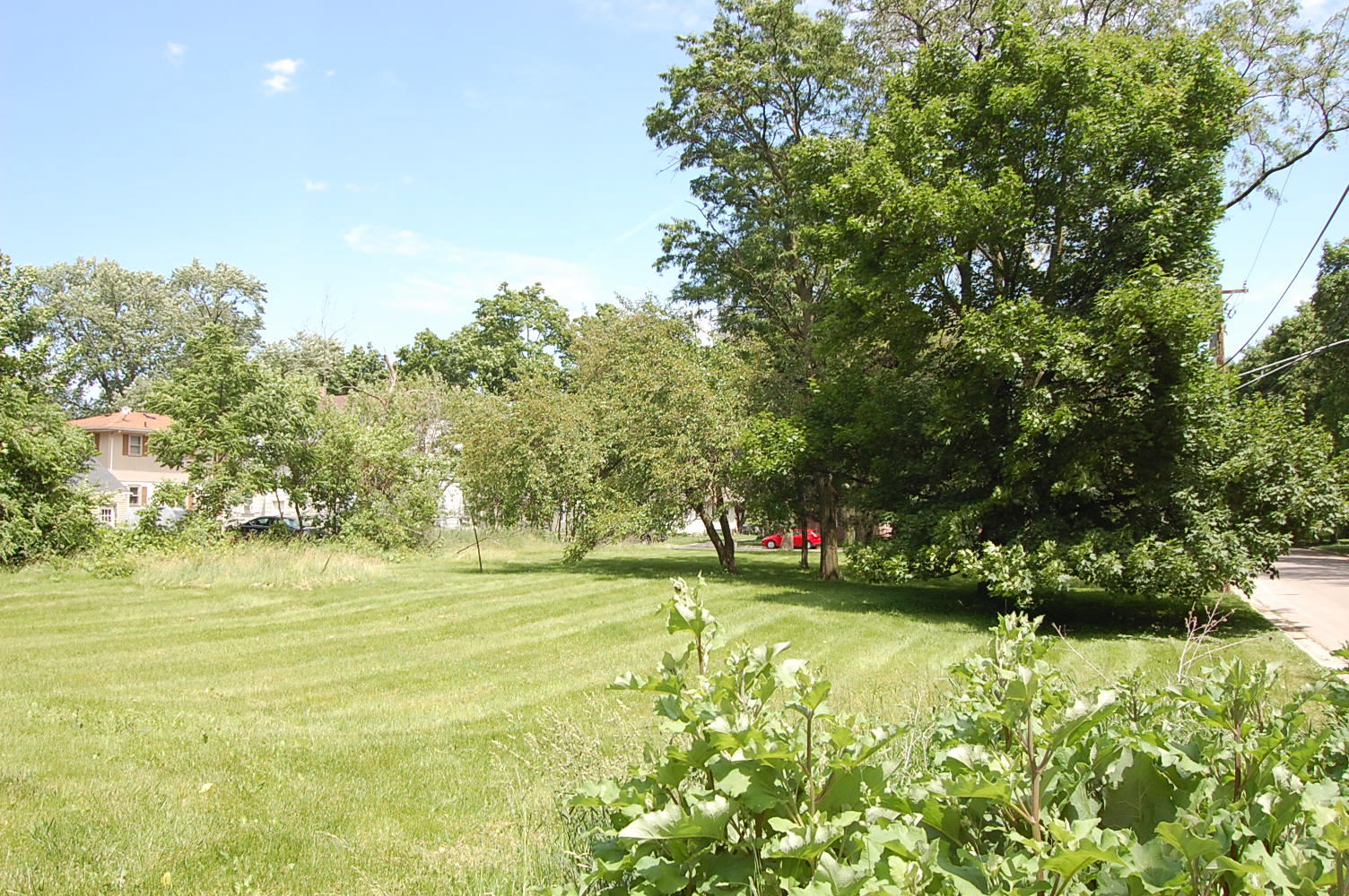 Enticing Illinois lot in City limits - Image 0