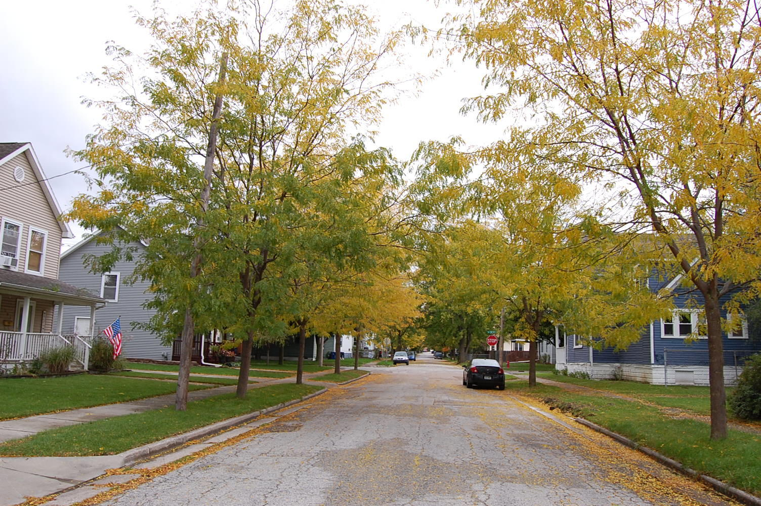 Charming Lot in Family Friendly Community - Image 4