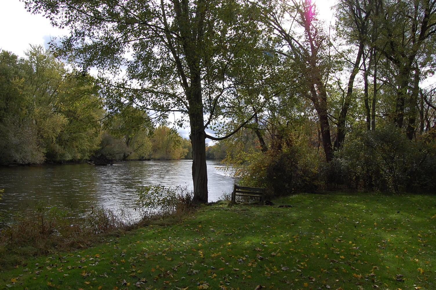 Beautiful Riverfront Acreage - Image 6