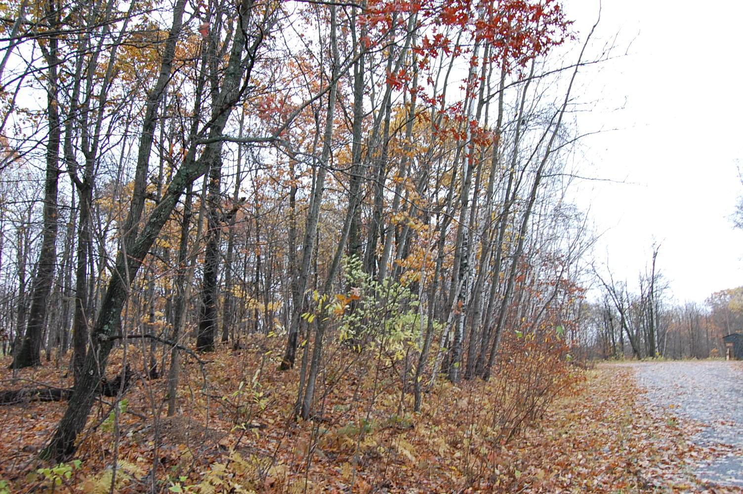 Minnesota property near golf course and lake - Image 1