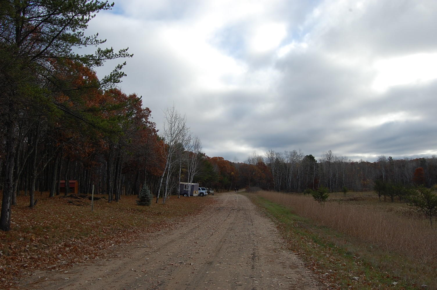 Just Over Two Acres in The Great North - Image 4