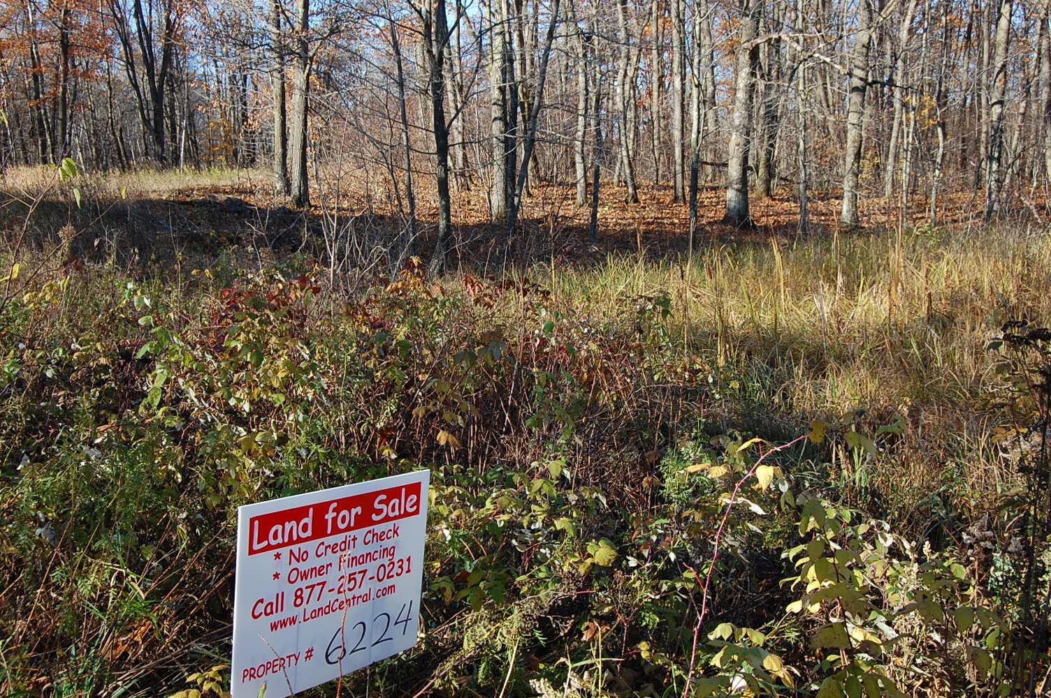 One Acre Property Near Lake Camile - Image 4