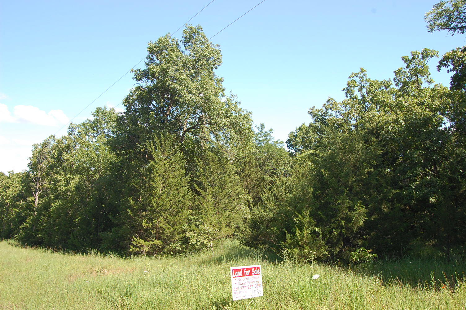 Spacious 2+ Acres of Private Land in Gated Community - Image 1