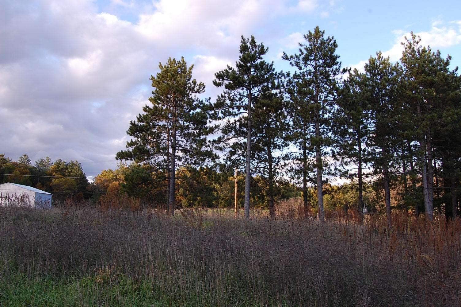 Easy to Build Your Dream Home on this Wisconsin Lot - Image 4