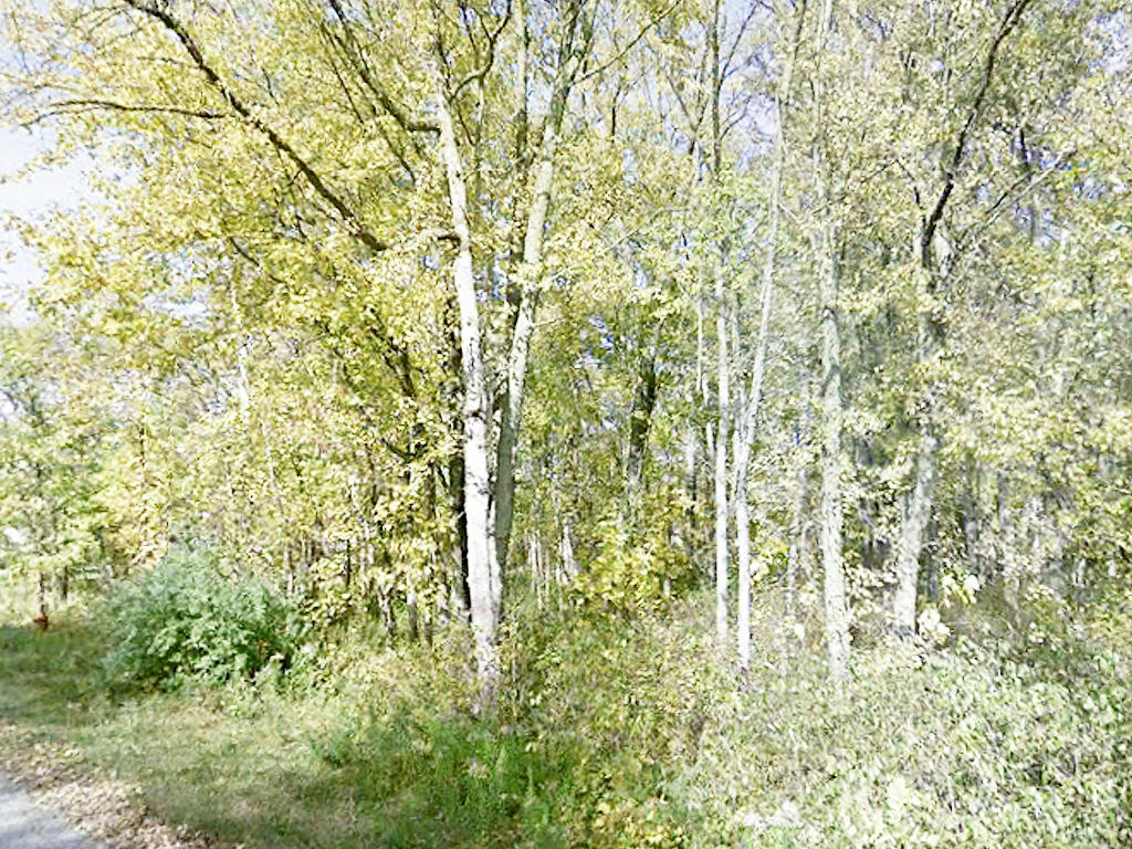 Gorgeous Undeveloped Lot with River View - Image 1