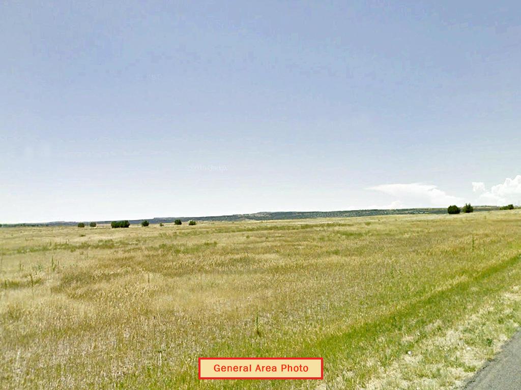 Colorado City Residential Oasis - Image 1