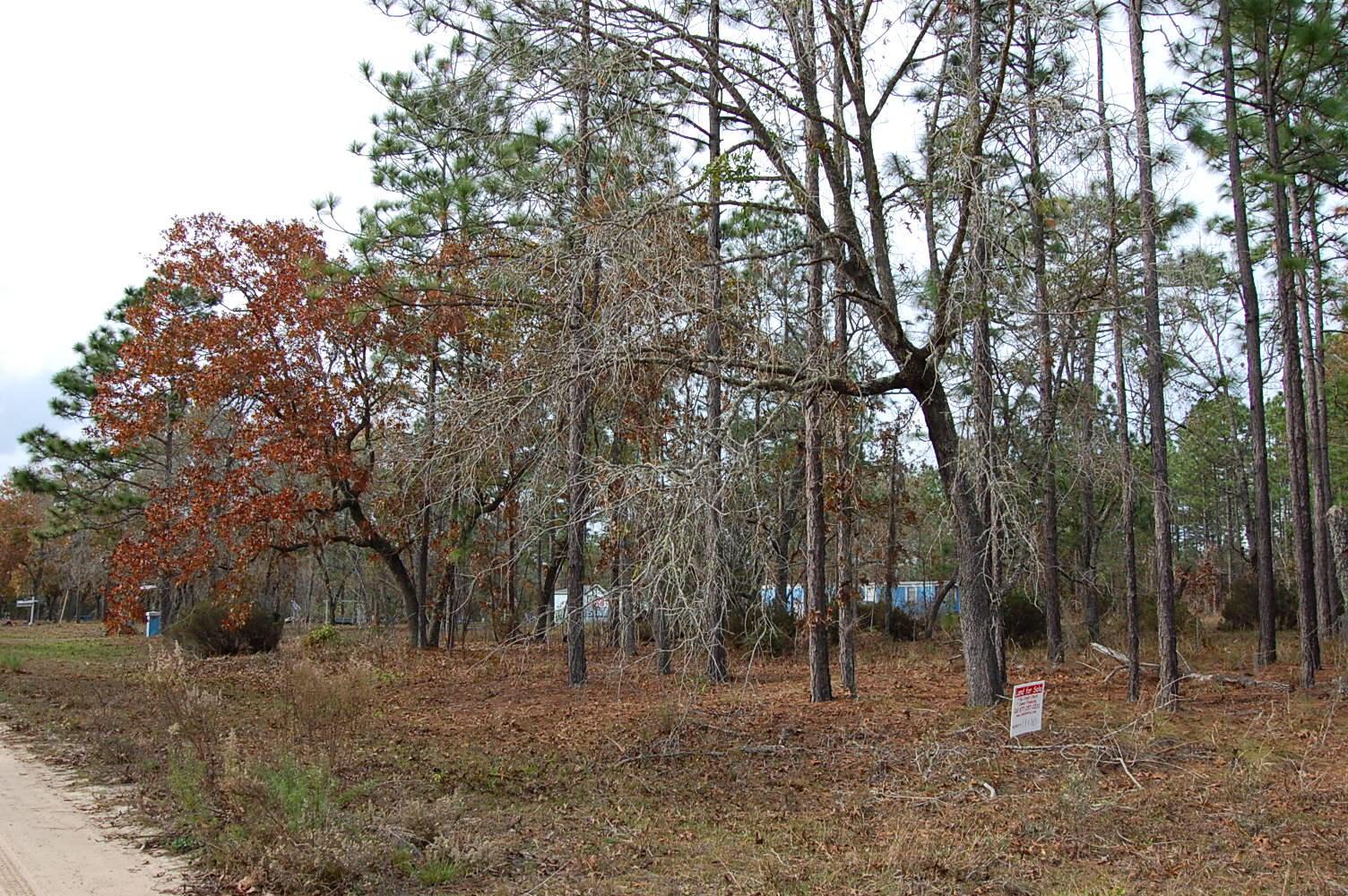 Spacious 1 Acre Lot Near Morris Lake - Image 0
