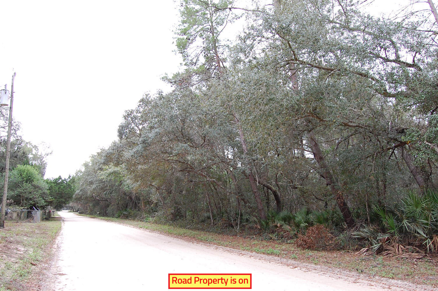 Acreage in Florahome Florida - Image 3