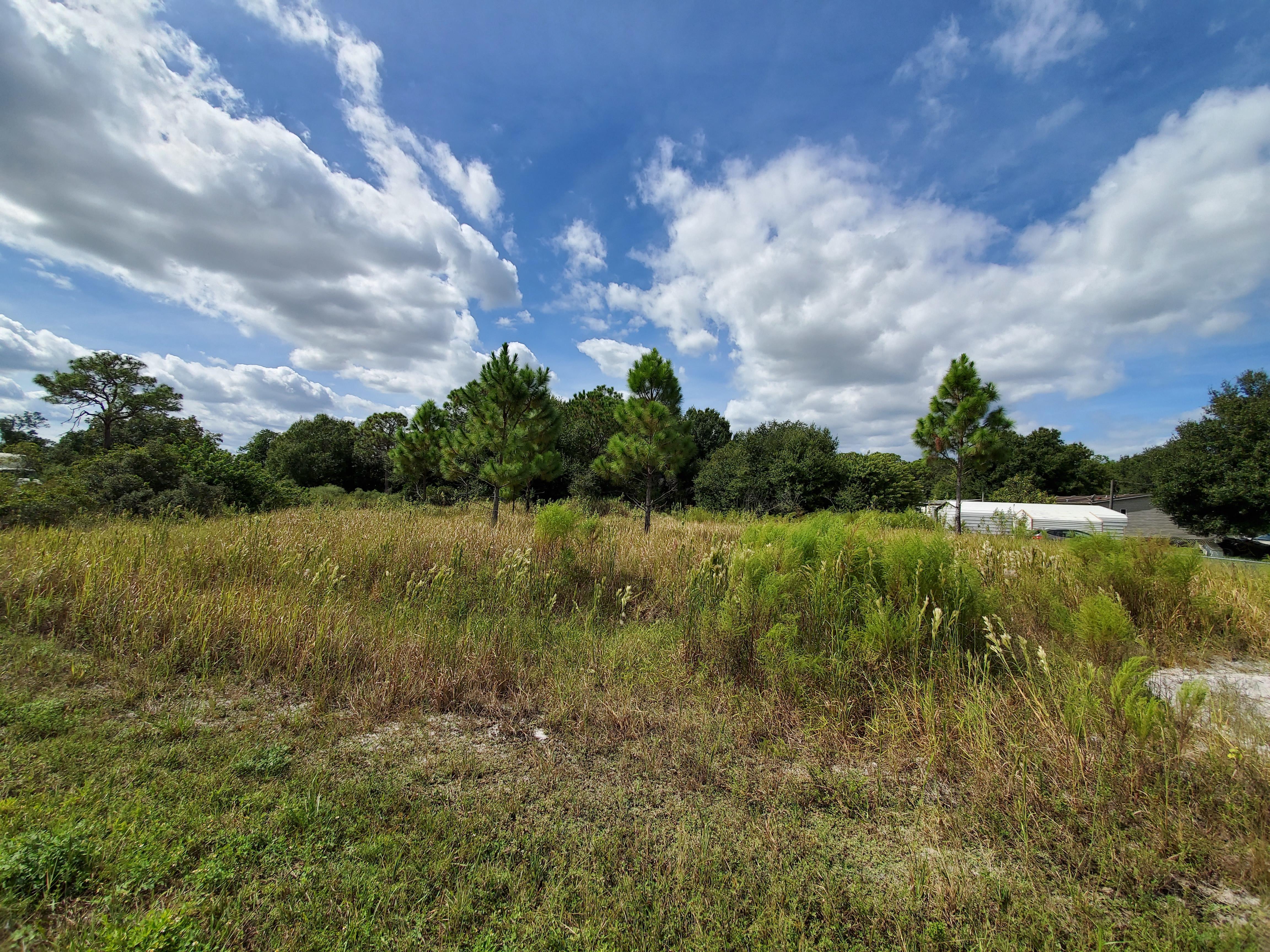 Near Half Acre in Avon Park - Image 4