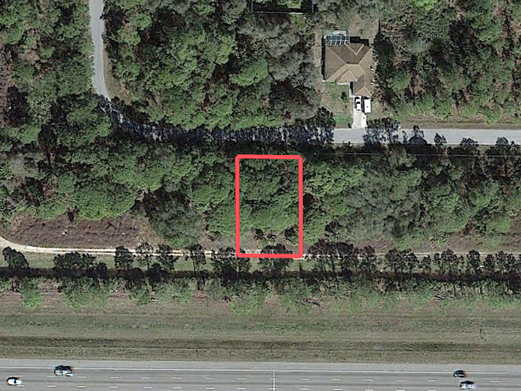 Wooded Quarter Acre Near Port Charlotte - Image 1