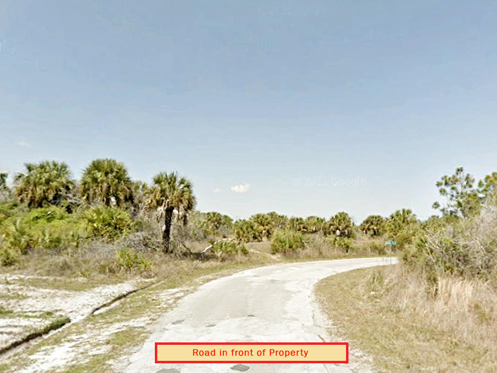 Near Quarter Acre in Sunshine State - Image 5