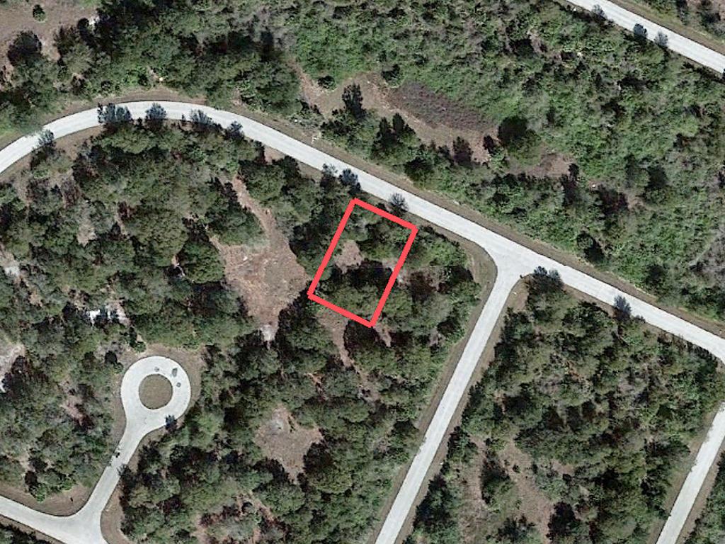 Quarter Acre in Beautiful Florida Subdivision - Image 2