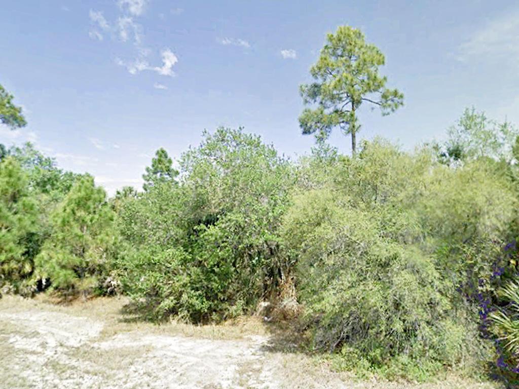 Port Charlotte Gem in Quiet Florida Neighborhood - Image 4