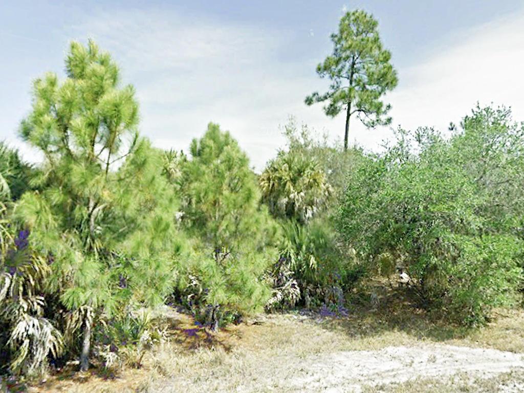 Port Charlotte Gem in Quiet Florida Neighborhood - Image 1