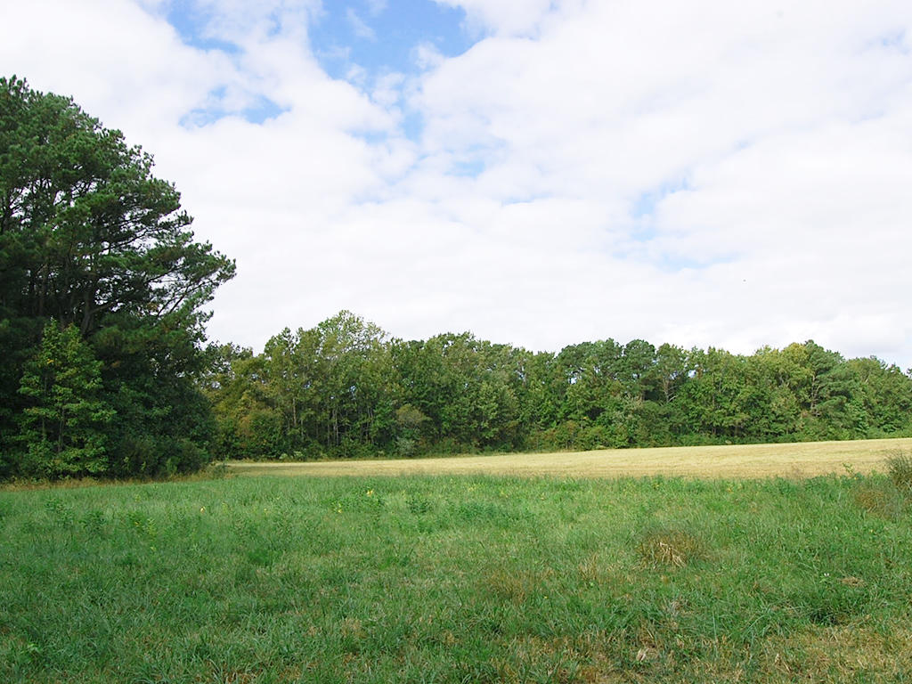 Virginia Property Just Steps From the Bay - Image 0