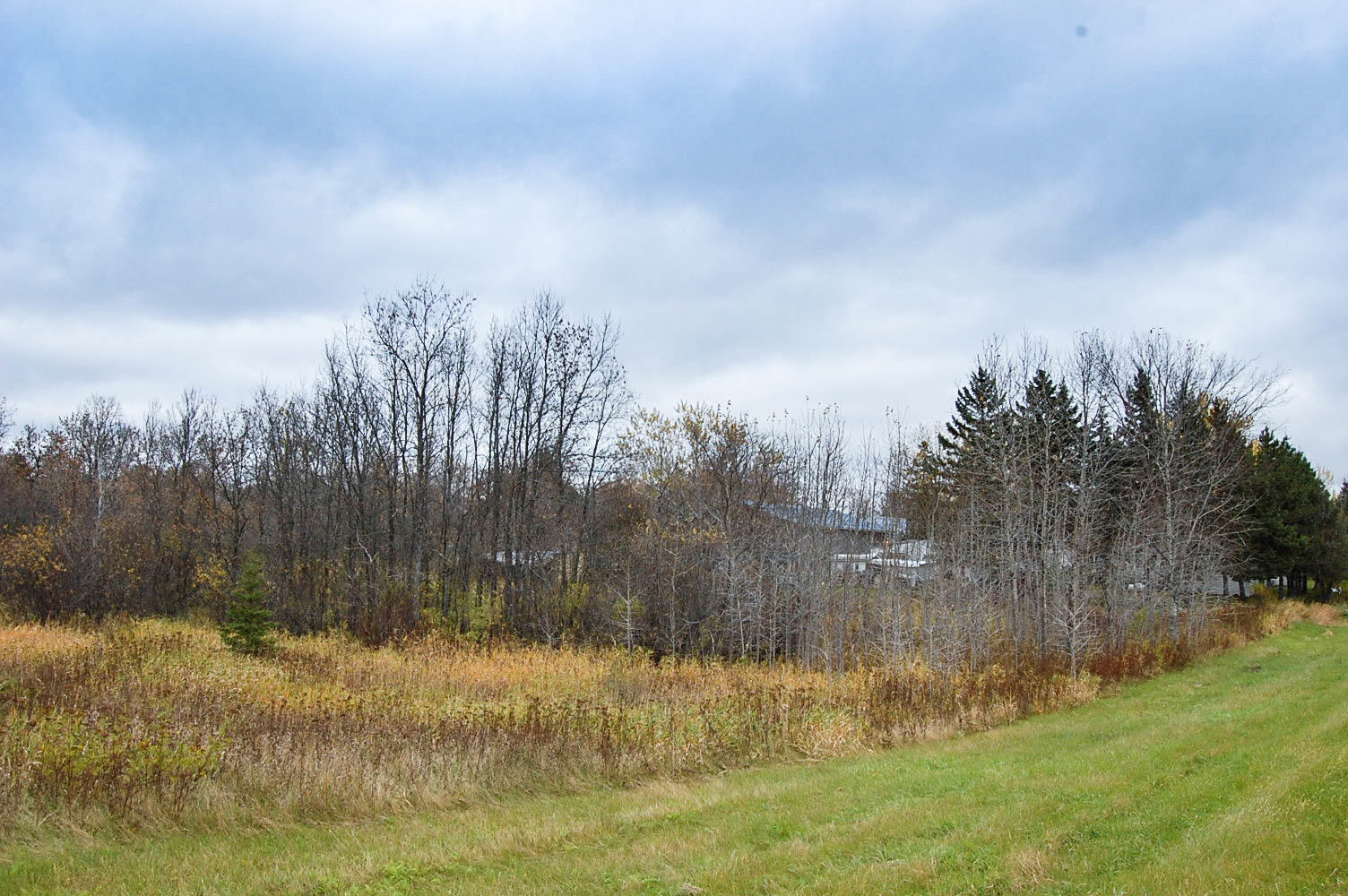 Beautiful Good Size Lot in Akeley - Image 5