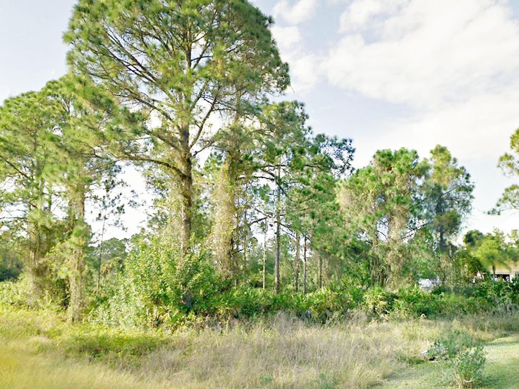 Florida Quarter Acre 30 Miles From Fort Myers Beach - Image 0