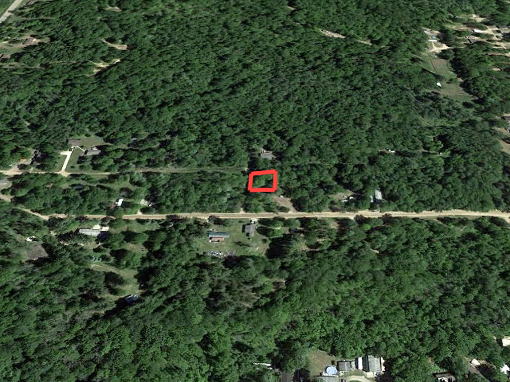 Heavily Treed Property in Beaverton - Image 2