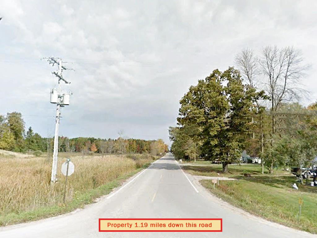Heavily Treed Property in Beaverton - Image 5