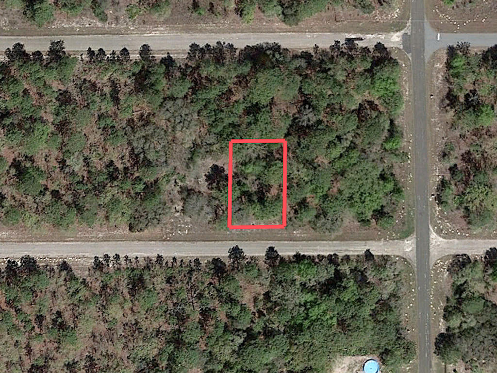 Nearly Quarter Acre Citrus Springs Tract - Image 2