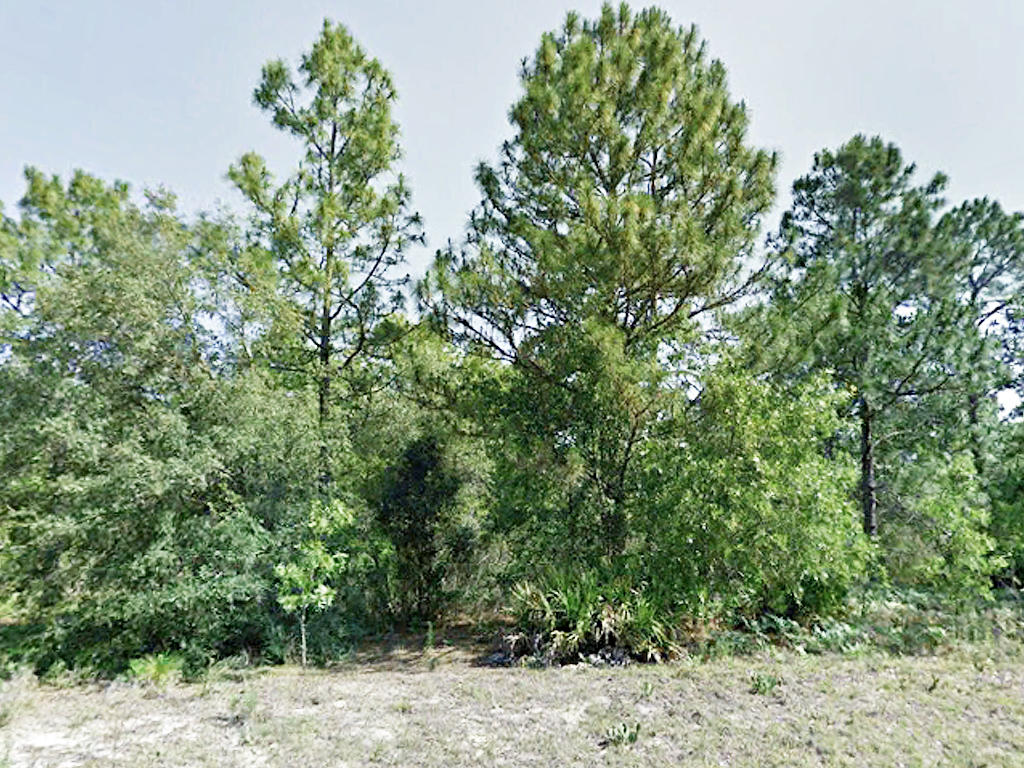 Nearly Quarter Acre Citrus Springs Tract - Image 1