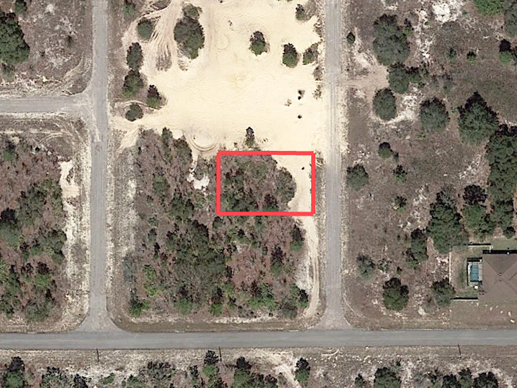 Sandy Quarter Acre Lot in Citrus Springs - Image 1