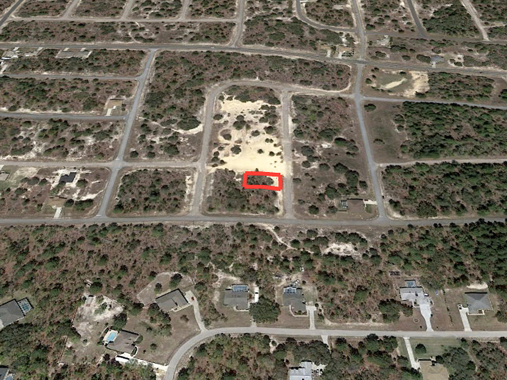 Sandy Quarter Acre Lot in Citrus Springs - Image 2