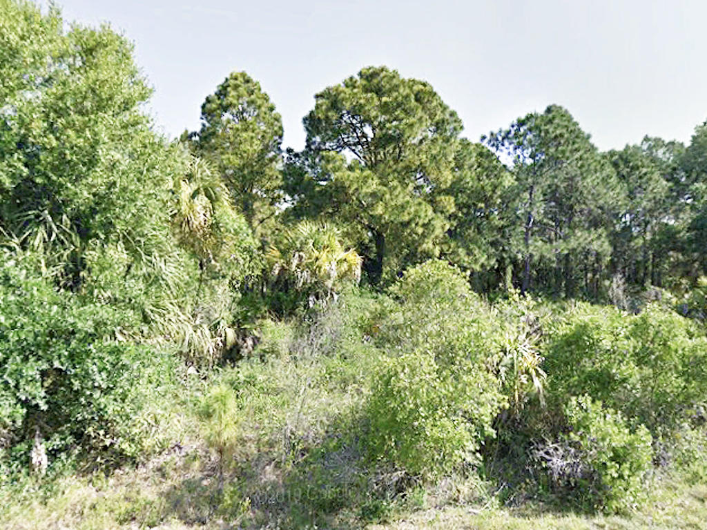 Easy Access Quarter Acre Corner Lot Just Off I-75 - Image 4