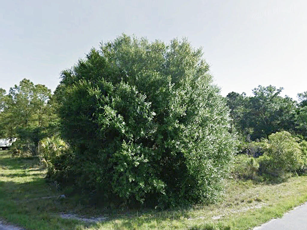 Easy Access Quarter Acre Corner Lot Just Off I-75 - Image 5