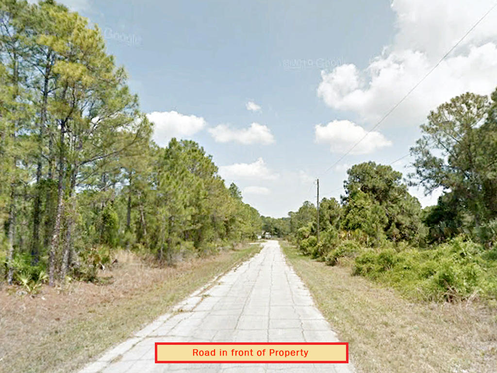 Sweet Land Deal in Beautiful North Port - Image 4