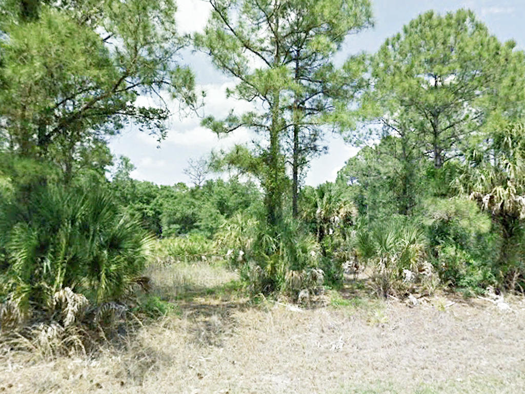 Sweet Land Deal in Beautiful North Port - Image 1