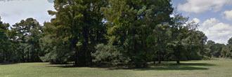 Gorgeous Quarter Acre Property Near Chincoteague Bay
