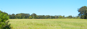 Half Acre Texas Lot in Trinity Plantation