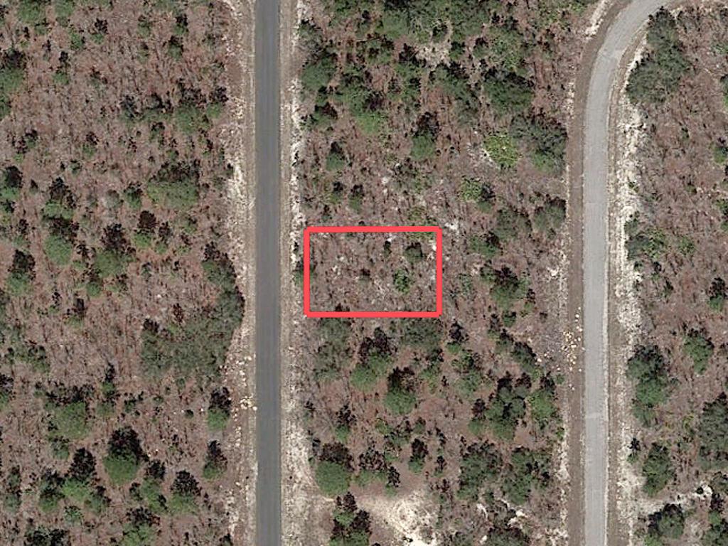 Residential Land on Florida West Coast - Image 1