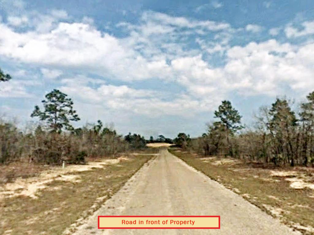 Residential Land on Florida West Coast - Image 4
