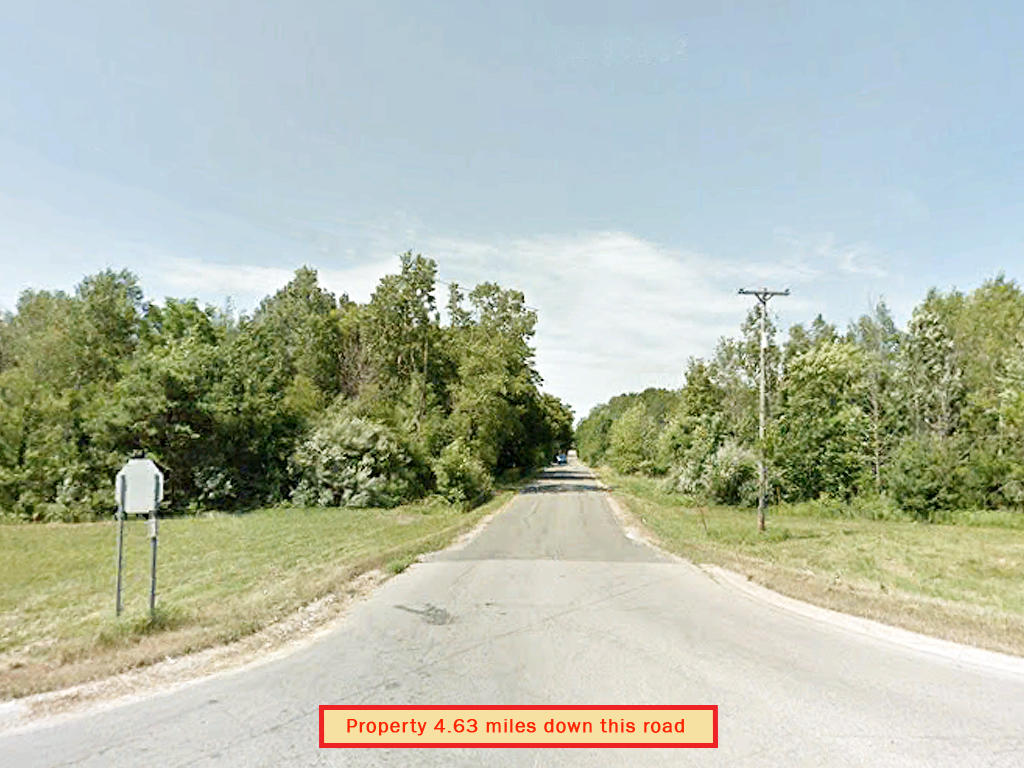 Beautiful Michigan Land Investment Near Townline Lake - Image 4